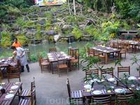 Лесной ресторан