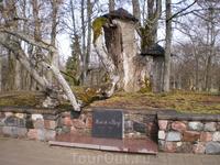 Весной 1601 года шведские войска захватили Турайдский замок. После битвы дворцовый писарь Грейф нашёл среди убитых истощённую голодом девочку. Грейф принёс ...