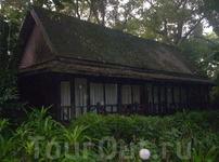 отель в джунглях