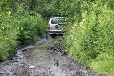 хотелось немного грязи, и мы её нашли, вернее после дождя многие лесные тропы выглядели именно так.