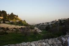 """""""Гиена огненная"""", а вдали стена отделяющая Палестину."""