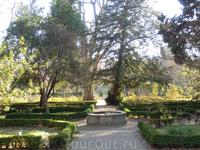 После обеда было так солнечно и прекрасно, что я решила пойти в Ботанический сад. Как и в парках Ла Гранхи, немногочисленные посетители практически не ...