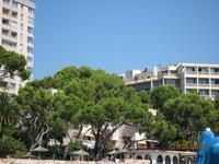 побережье в п. Ильетос