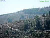 Горно-лесная трасса выглядит красивым серпантином