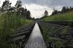 Карельская железная дорога...