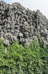 Вальдштейнский сад. Эта стена - сталактитовый шедевр, существует с XVII века .
