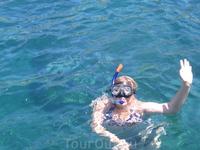 знакомство с подводным миром Южно-китайского моря у острова Hon Mun