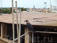 в баре на крыше отеля