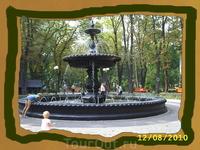 Парк. август 2010 года.