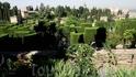 Granada - Generalife