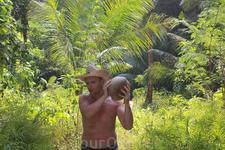 Муж нашел кокос