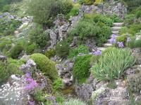 Нимфенбург. Ботанический сад. Альпийская горка
