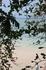 Карибское море всегда прекрасно...