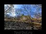 Территория Сафары поросла древостоем и окружена лесами, здесь тихо и глубоко спокойно - таким и положено быть монастырю.