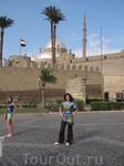 поедка а Каир, заняла 5 часов по пустыни