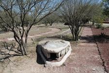 Чтобы увидеть пирамиды тольтеков нужно пройти сквозь парк засаженный всевозможными сортами кактусов и большим количеством деревьев и кустарников. Змей ...