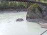 Катунь, у острова Патмос
