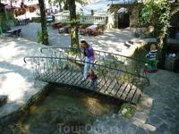 Мы с сыночком рассматриваем форель в пруду стоя на мостике с кованными перилами