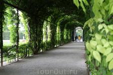 Шенбруннский парк.