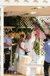 Свадьба! Все было скромно,мило и очень тихо=)))