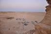 время 5 утра, на джипах приехали в пустыню встречать рассвет:)