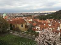 Вид на Прагу с высоты птичьего полета