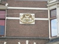 нидерландские львы