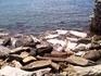 И снова море... Кстати, здесь у самых берегов живут морские ежи, очень и очень много