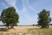 природа в Калязинском районе