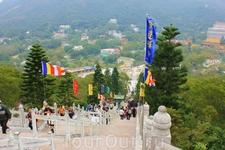 Более 200 ступенек ведут к бронзовой статуе Большого Будды...
