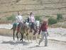 В Петру можно въехать лишь на верблюде, лошади или осле