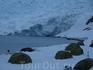 Кемпинг в Антарктиде