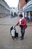 реймс во франции очень любят собак