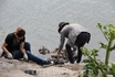 местные жители собирают дары моря в Токийском заливе