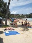 Коконат на пляже Ката