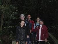 Наша команда в экваториальном лесу