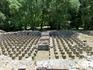 Большие термы были сооружены около 200 г.н.э. и являлись частью огромной городской строительной программы. На этих маленьких пилястрах лежал пол, а в образуемом ...