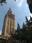 Кафедральный собор. Колокольня
