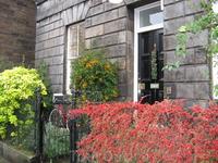Вот такой желто-красный декабрь в Эдинбурге.