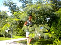 т.к. территория санатория просто огромная, а днем температура поднимается до +40, на территории очень много кустарников и деревьев, в тени которых можно ...