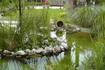Тот же пруд правее островка. Здесь скоро расцветут лотосы.