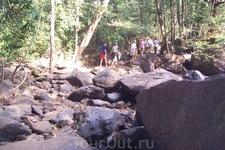 Дорога на водопад Дудхсагар