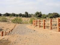 Часть изгородей еще не построена