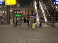 Берлинские медведи...