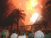 пальмы и людские головы на фоне огней