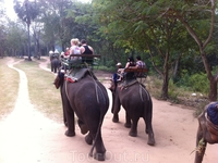 В слоновой деревне была и прогулка на слонах-экск-я по реке Квай