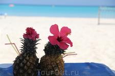 пинья колада прямо в ананасах, продается повсеместно на пляже Варадеро, есть аналогичный в кокосе