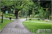Любимый парк