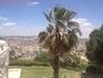 Программа была обширная и интересная,конечно, одного дня не достаточно,но мы постарались увидеть все самое интересное. На фото панорама Иерусалима. Вид ...
