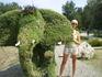 Вот такие слоны ходят по Анапе)